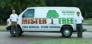 About Mister Tree Service In Memphis TN