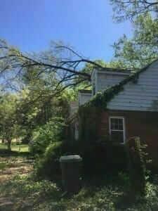 Memphis Storm Damage Tree Service
