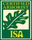 Mister Tree Service Team - Certified Arborist