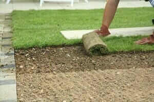 Advantages Of Sod