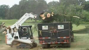 Lot clearing services in Memphis