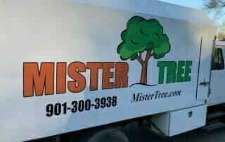 mister tree service truck