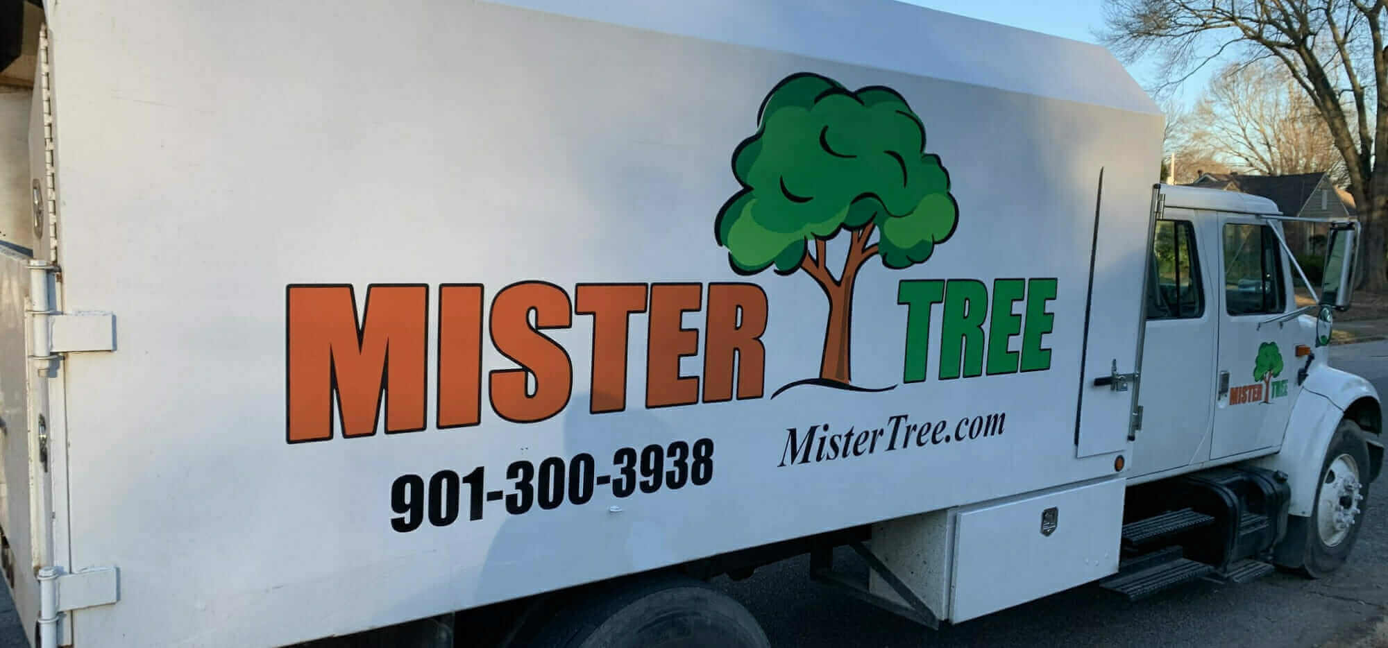 "Featured image for ""What Makes Mister Tree ""Google Guaranteed""?"""