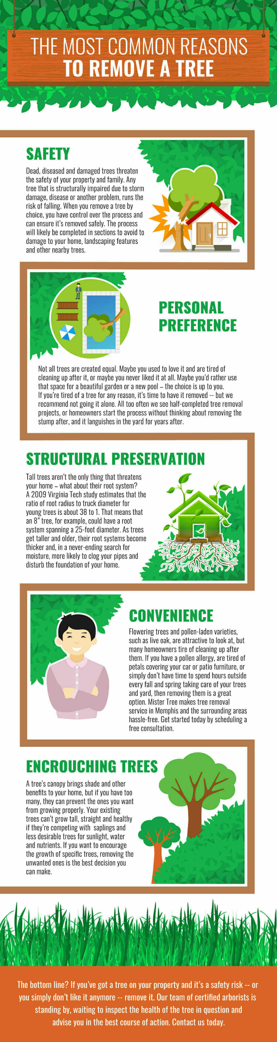 Most  Common Reasons To Remove A  Tree - Infographic